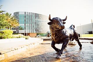 MSC Bull statue