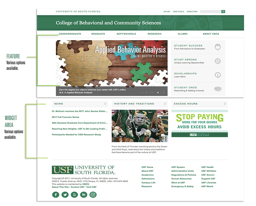 view of the USF homepage showing the feature and widget tools